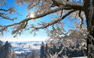 Бесплатные фото зима,холмы,горы,снег,деревья,иней,небо