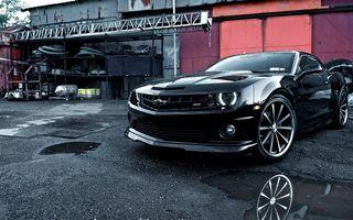 Заставки автомобиль,иномарка,спортивный,колеса,диски,шины,бампер