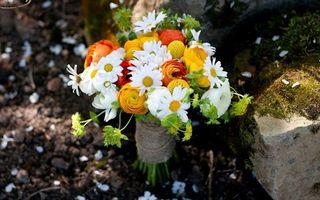 Фото бесплатно букет, невесты, ромашки