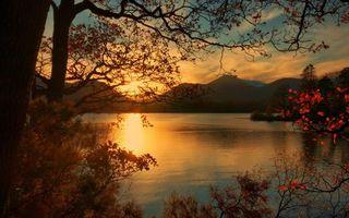 Фото бесплатно деревья, парк, лес, листья, осень, озеро, вода, горы, пейзажи