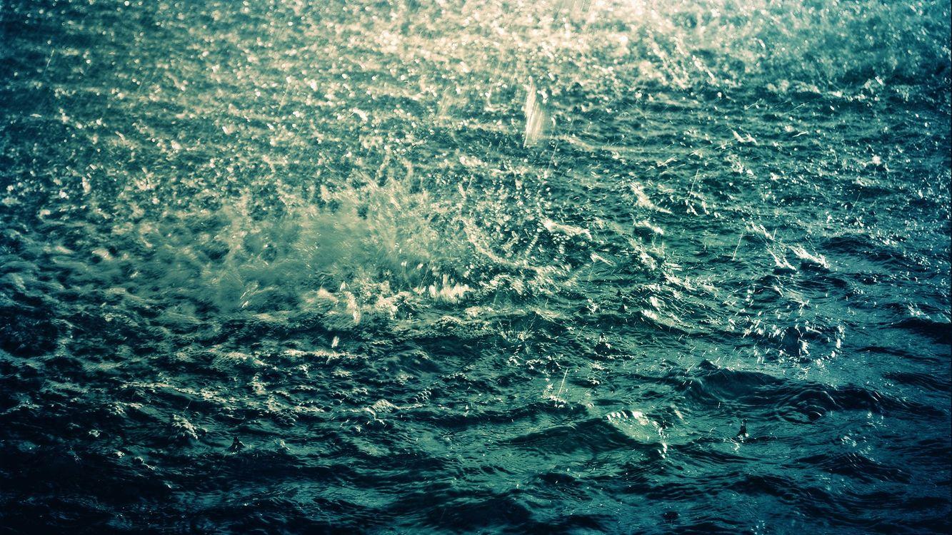 Фото бесплатно дождь, река, брызги, вода, природа, макро, макро