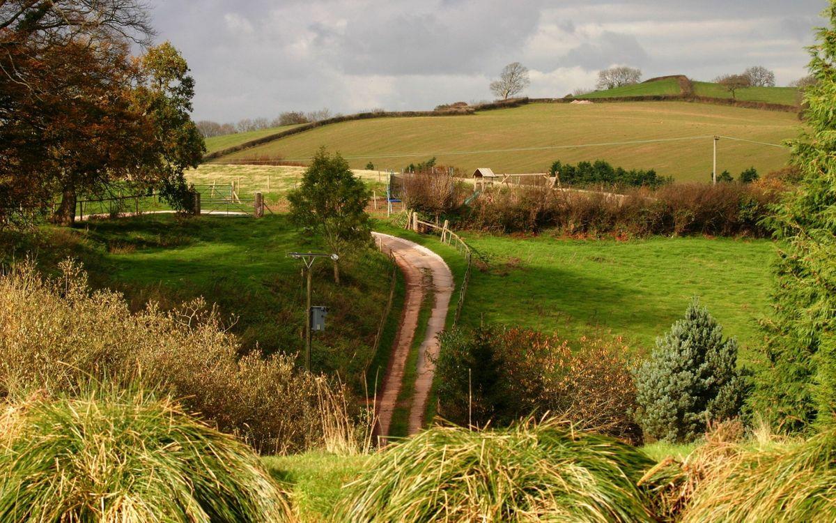 Фото бесплатно дорога, трава, деревья, забор, столбы, поле, небо, пейзажи, пейзажи