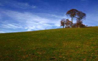 Бесплатные фото холм,трава,деревья,небо,облака,природа