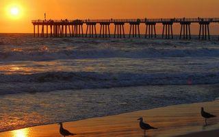 Фото бесплатно мост, волны, вода