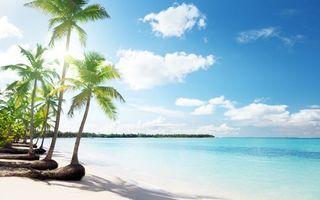 Фото бесплатно пальмы, небо, острова