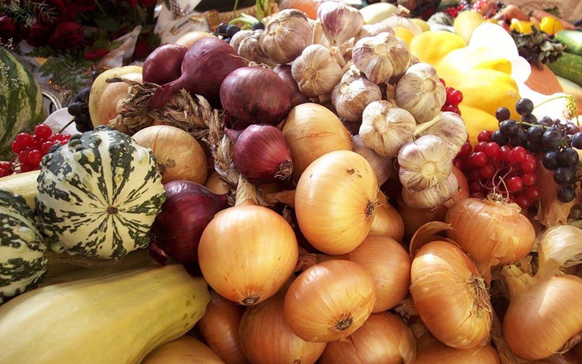 Фото бесплатно овощи, фрукты, лук, чеснок, смородина, кабачки, огурцы, еда, еда