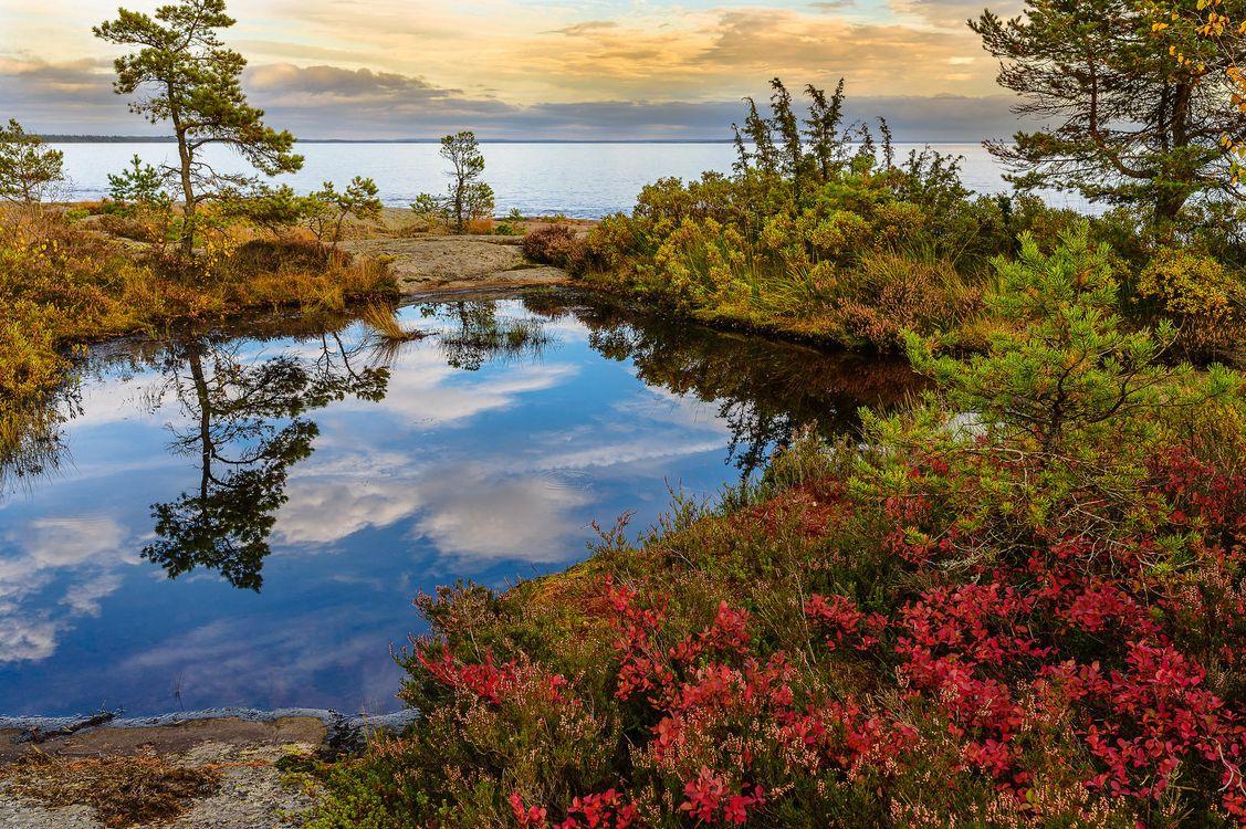 Фото бесплатно Вермланда, Швеция, Природа, Пейзаж, морской пейзаж, Закат солнца, пейзажи