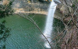 Бесплатные фото водопад,струя,вода,брызги,капли,ветки,лес