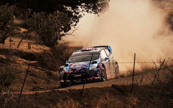 Photo free Ford focus, rally, race