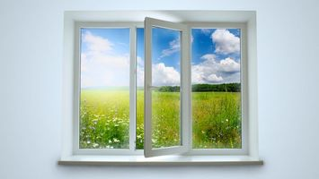 Бесплатные фото окно,поляна,трава,ромашки,рама,форточка,лето