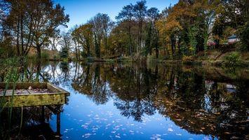 Бесплатные фото осень,озеро,отражение,листва,деревья,мостик,природа