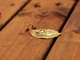 Фото бесплатно доски, лист, желтый