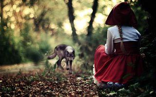 Бесплатные фото красная шапочка,волк,лес,трава,поляна,сказка,зверь