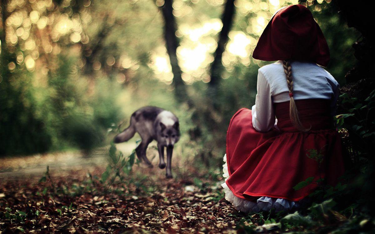 Фото бесплатно красная шапочка, волк, лес - на рабочий стол