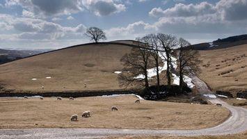 Photo free nature, snow, field
