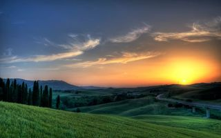 Фото бесплатно поля, зеленые, деревья