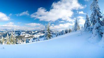 Бесплатные фото снег,спуск,елки,горы,день,разное