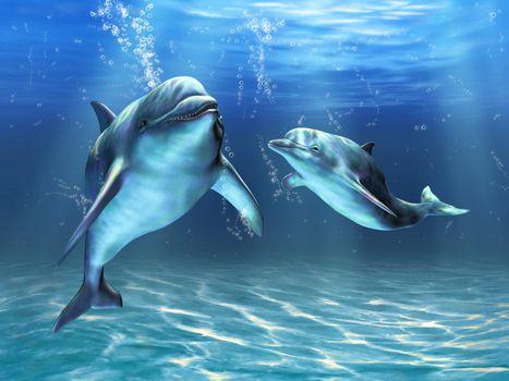 Фото бесплатно вода, дельфины, пузыри