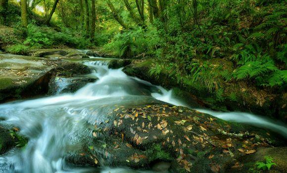 Фото бесплатно река, речка, водопад