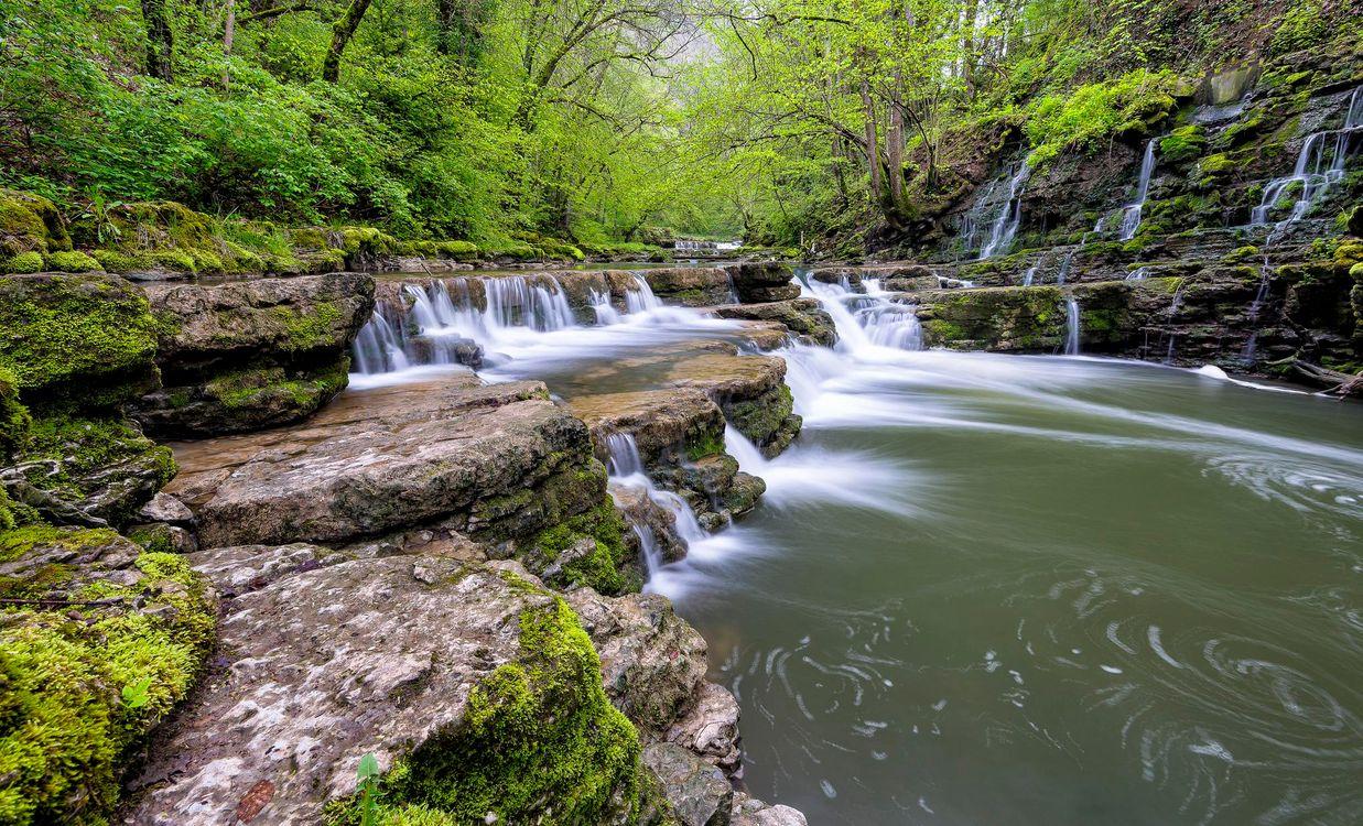 Фото бесплатно лес, деревья, скалы, река, природа - на рабочий стол