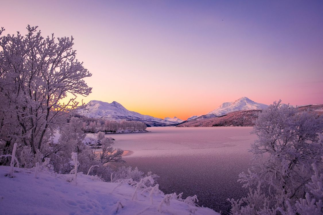 Обои Stor Vann lake, Storvann lake, Norway, Scandinavian Mountains, Норвегия, Скандинавские горы, озеро, зима, горы, деревья на телефон | картинки пейзажи