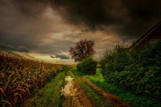 Фото бесплатно пейзаж, лужи, облака