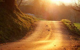 Бесплатные фото осень,дорога,гора,трава,деревья,солнце