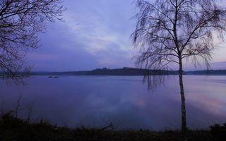Бесплатные фото вечер,осень,берег,трава,деревья,озеро,небо