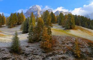 Фото бесплатно горы, холмы, деревья