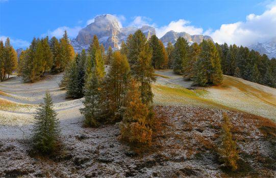 Photo free mountains, hills, trees