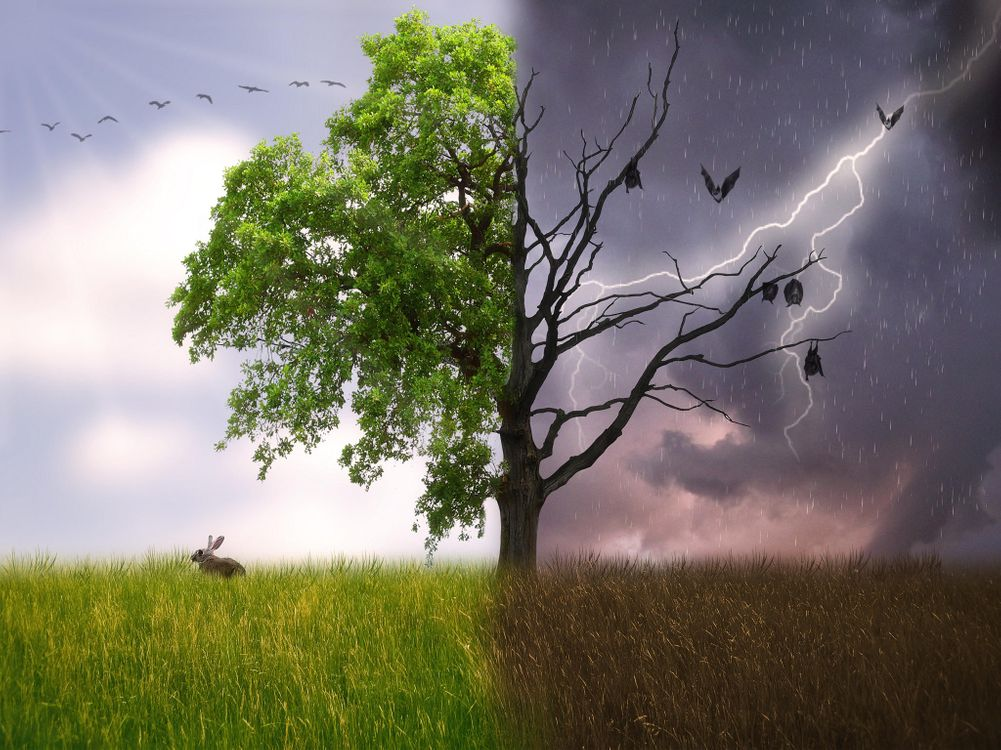 Фото бесплатно поле, дерево, фантазия, рендеринг