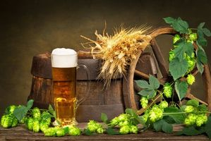 Заставки пиво, бочка, кружка, хмель, напиток