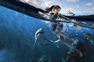 Бесплатные фото море,девушка,акулы