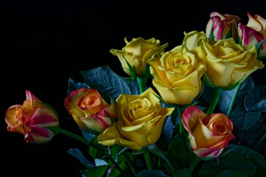 Photo free roses, yellow roses, bouquet of roses