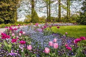 Бесплатные фото сад,парк,деревья,цветы,пейзаж
