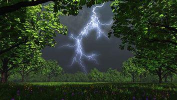 Фото бесплатно молния, трава, небо