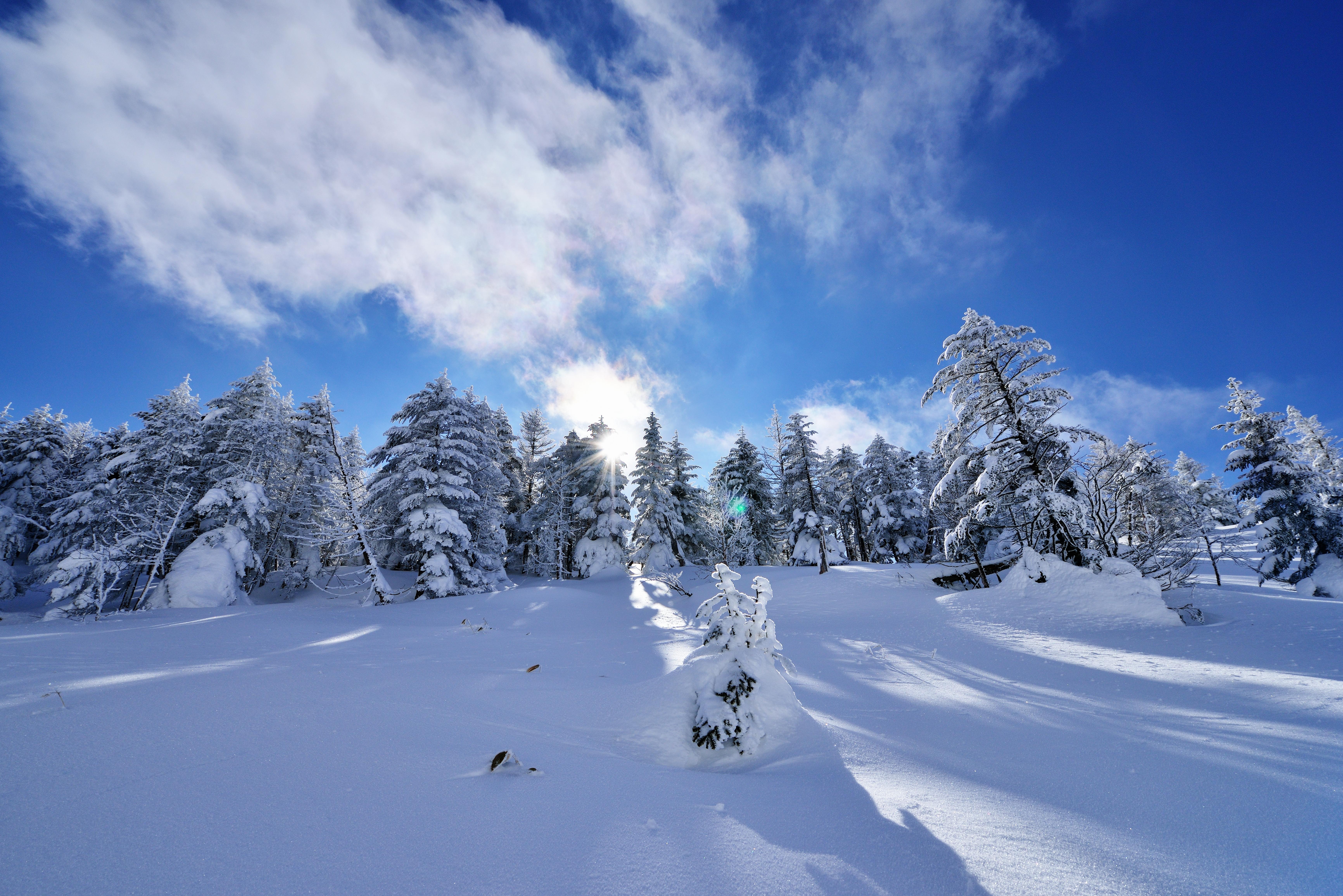 безоблачное небо зимой  № 2469673 без смс