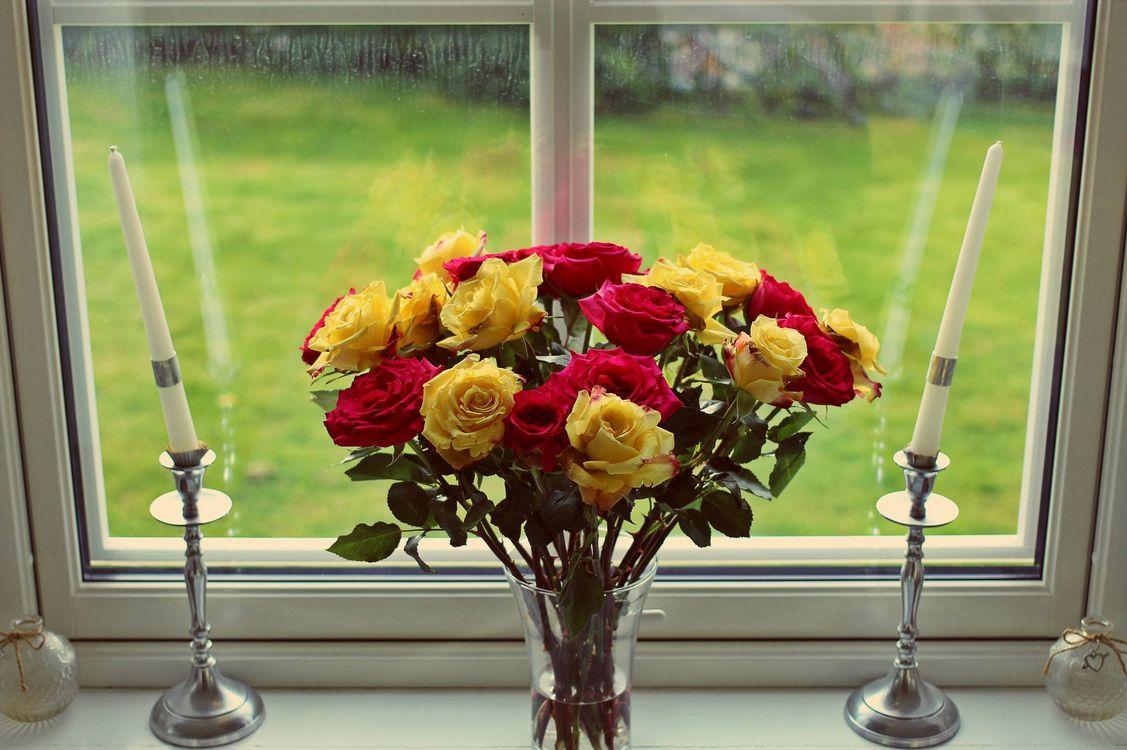 Фото бесплатно розы, роза, цветы, цветок, флора, букет, ваза, свечи, окно, натюрморт, цветы