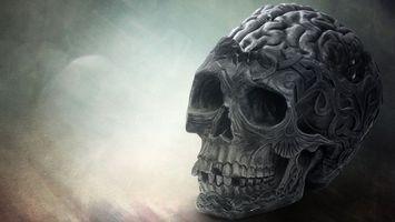 Бесплатные фото рисунок,череп,извилины,мозг,зубы,узоры
