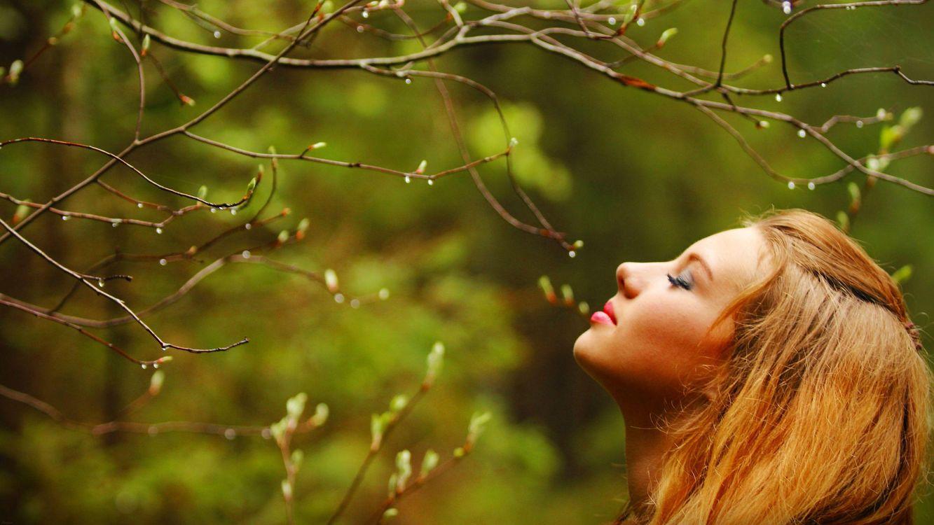 Фото бесплатно весна, девушка, дерево, ветви, капли дождя, природа, настроения