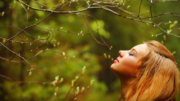 Фото бесплатно весна, девушка, дерево
