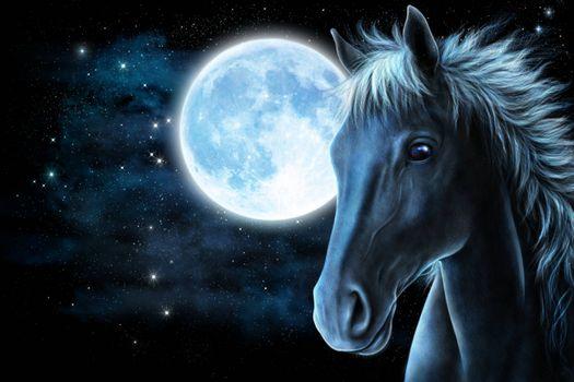 Фото бесплатно art, лошадь, луна, ночь