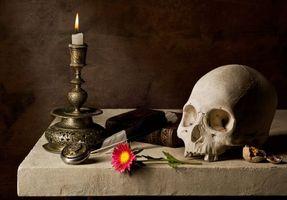 Фото бесплатно натюрморт, композиция, свеча, череп, цветок, книга