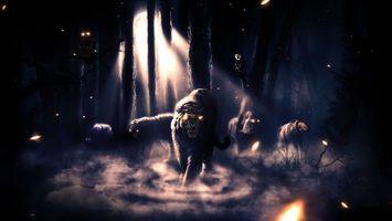 Фото бесплатно темный лес, тигр, лев