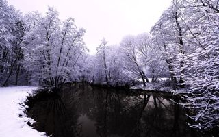 Фото бесплатно речка, зима, снег