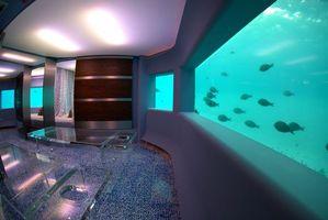 Фото бесплатно аквариум, рыбки, освещение