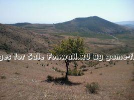 Бесплатные фото дерево,поле,небо,горы,трава,природа,природа