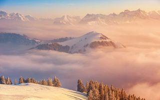 Фото бесплатно горы, иней, природа