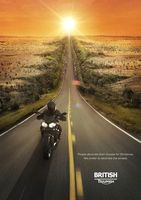 Бесплатные фото мотоцикл,мотоциклист,дорога,скорость,солнце,машины,мотоциклы