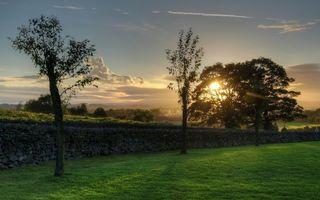 Заставки поле,трава,зеленая,деревья,небо,солнце,природа
